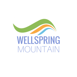 Wellspring-logo-new-color-palette--Purple